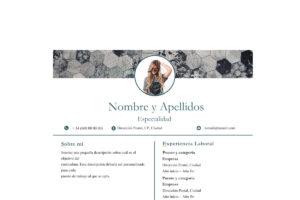 CV Moderno-min