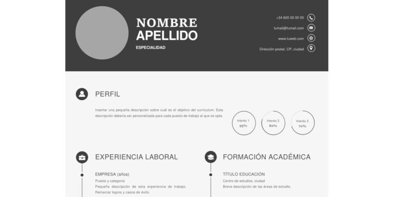 Modelo de Curriculum Vitae Original
