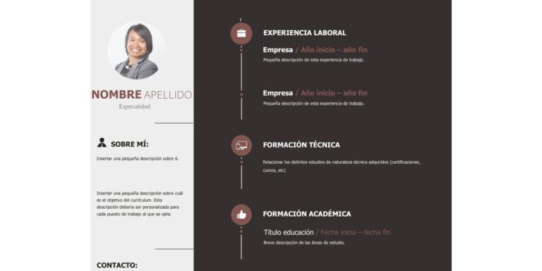 Modelo de Curriculum Vitae Técnico